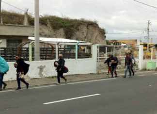 A pedradas y patadas corren a venezolanos en Ecuador tras asesinato de embarazada (+Videos)