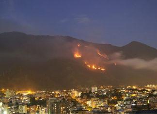 MP investiga incendio forestal en el Ávila