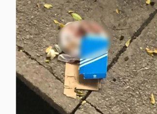 En una caja hayan un feto en plena av. Bolívar en Maracay