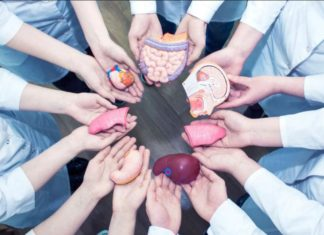Hoy de 6 de junio, Día Mundial del Paciente Trasplantado