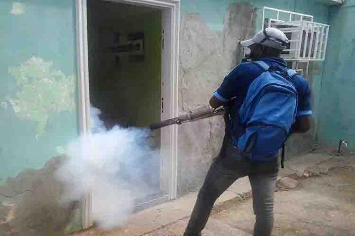 Falcón en zona de seguridad contra el dengue