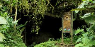 Este 15 de julio: Cueva del Guácharo cumple 70 años como patrimonio cultural
