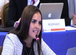 Tamara Suju en la OEA: La tortura es una institución en Venezuela