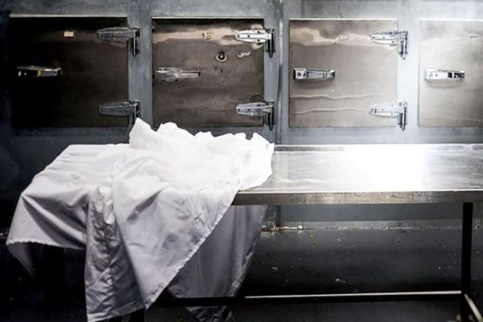 Donan 1.500 kilos de pescado, lo guardan en la morgue y se pudrió (+Fotos)