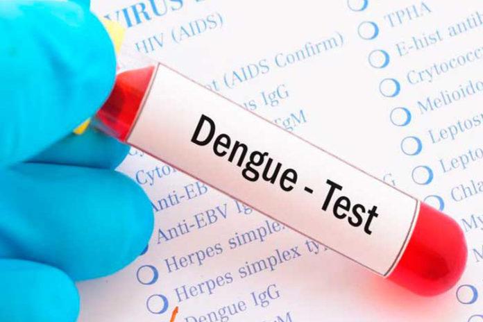 Podrán detectar el dengue a través de un test con nueva estructura de ADN