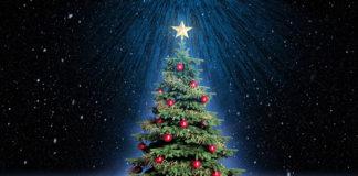 Conoce la leyenda del origen del árbol de Navidad