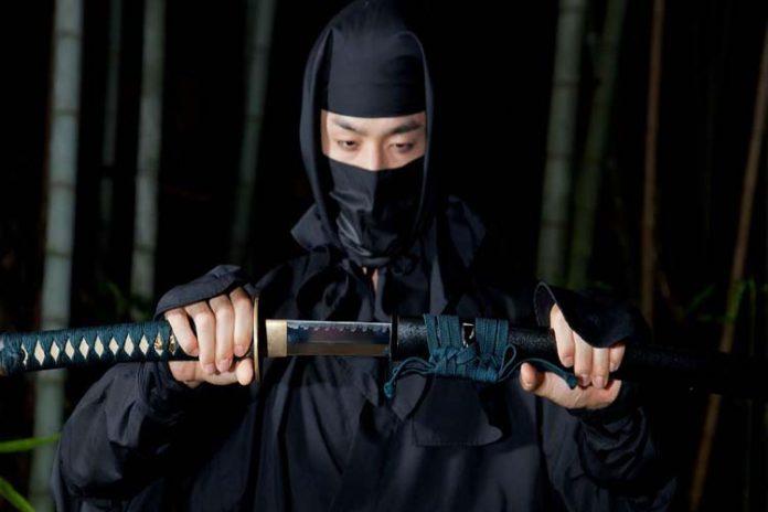 5 de diciembre: Día Mundial del Ninja
