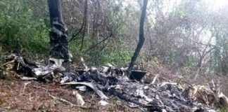 Rescatan y retiran los cuerpos de los fallecidos del avión siniestrada (+Video)