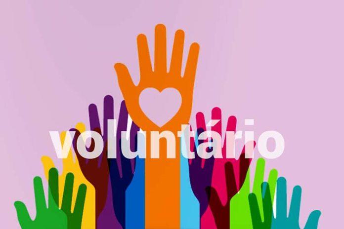 5 de diciembre: Día Internacional de los Voluntarios