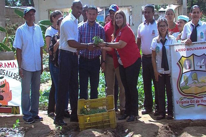 """""""Todas las manos a la siembra"""" entrega 5.000 plantas a la Virginia Gil de Hermoso"""