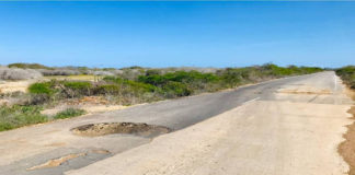 Carreteras del municipio Falcón se hunden en el olvido