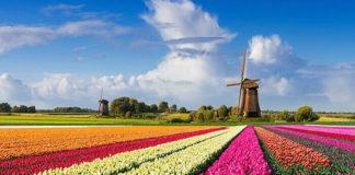 Llegó enero 2020 y Holanda ahora se llamará Países Bajos