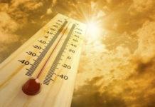 El 2019 fue el segundo año más caluroso (+Detalles)