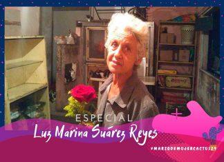 Luz Marina transformó su apartamento en un refugio por amor a los gatos y perros callejeros