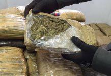 Rumbo a Lara: Arrestan a trujillano con más de 60 panelas de marihuana