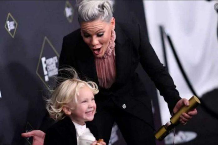 Pink y su hijo dan positivo al coronavirus