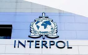 Interpol alerta a los hospitales de cibercriminalidad durante pandemia